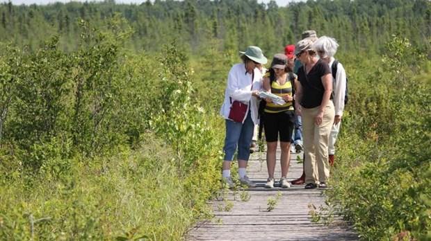 des visites  u00e9cologiques et foresti u00e8res  u00e0 ne pas manquer