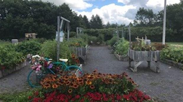 Fete Des Recoltes Du Jardin Du Savoir Une Fete Gratuite Et Pour